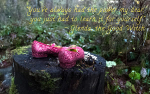 Dorothy's ruby slippers sitting on a stump in the woods